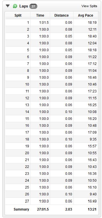 11/24/13 interval laps