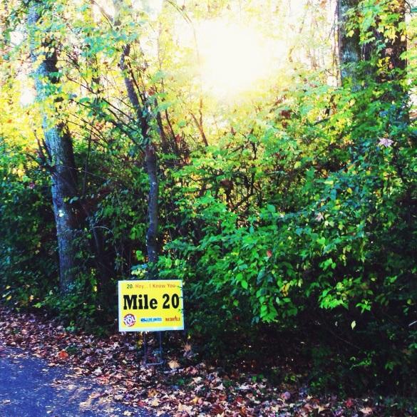 Nashville Marathon Mile 20