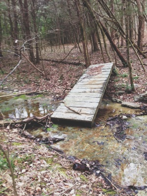 fallen bridge at Long Hunter State Park
