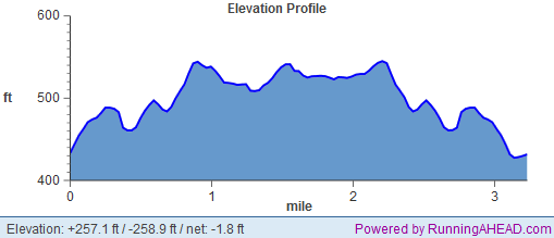 fangtastic 5k elevation profile