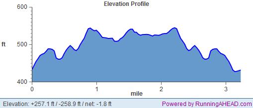 fangtastic 5k elevation profile
