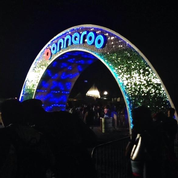 Bonnaroo arch